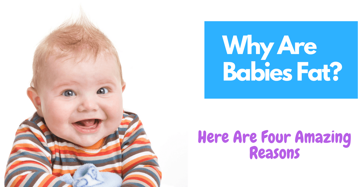 Why Are Babies Fat Here Are Four Amazing Reasons