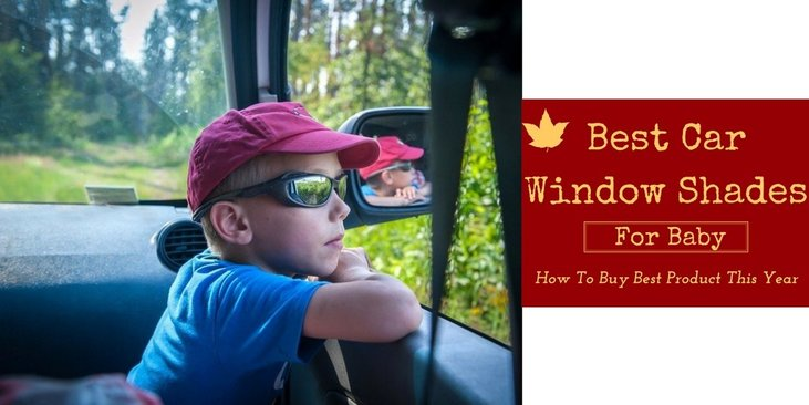 Best Car Window Shades For Baby How To Buy The Best Product This Year