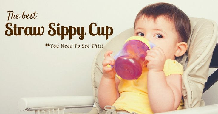 You Need To See This Before You Decide What The Best Straw Sippy Cup Is!