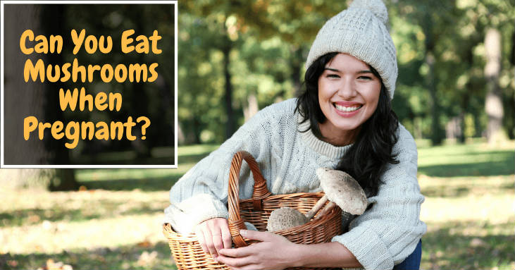 Can-You-Eat-Mushrooms-When-Pregnant