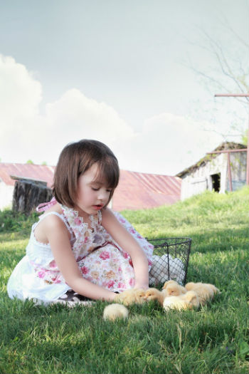 Fun Chicken Facts For Kids (And For Parents, Too!)