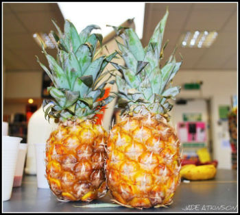 What-Can-Pineapples-Do-For-You