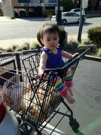 When-The-Baby-Can-Sit-Unsupported-He-Can-Sit-In-a-Shopping-Cart